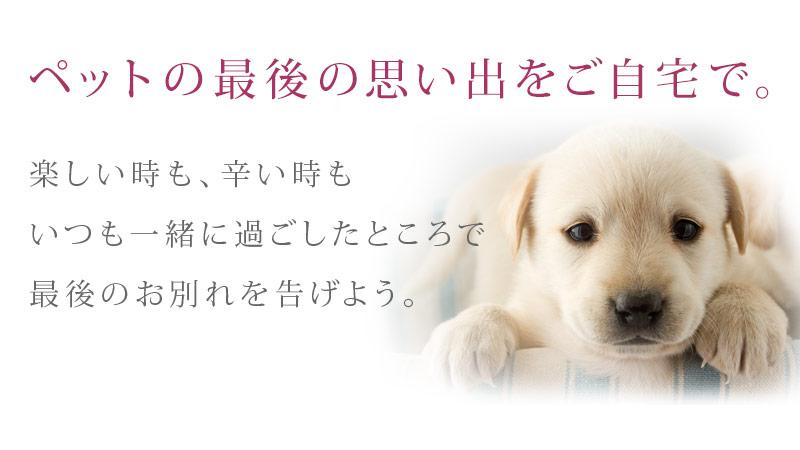 東京 ペット 葬儀
